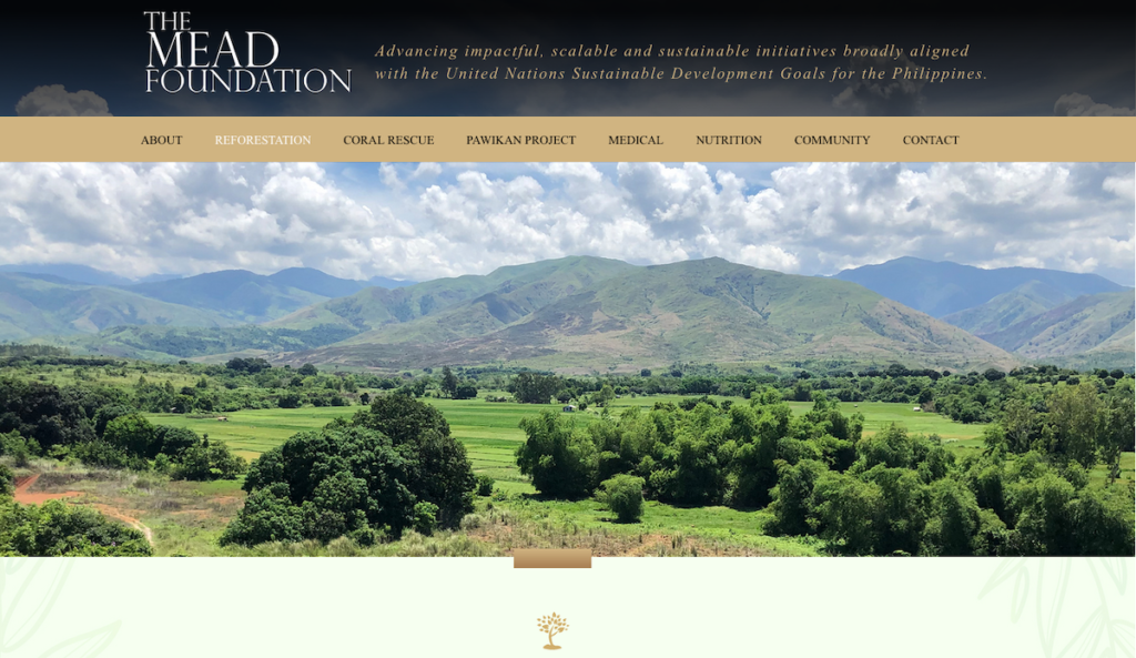 Image credit: Screenshot of The Mead Foundation site